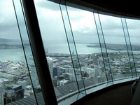 Auckland Sky Tower Window